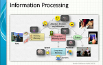 Information Processing Model
