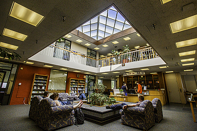 Students in on-campus library, studying.
