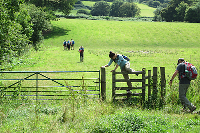 Students walking through a lush field with a fence and gate in the foreground