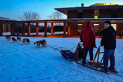Sled dog team on the Quad at Landmark College