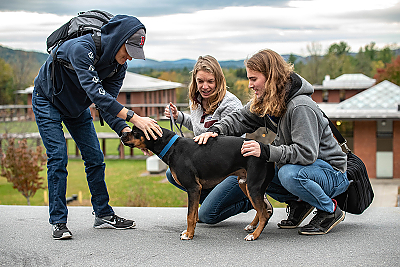 Students petting Winston (therapy dog)