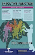 executive function poster